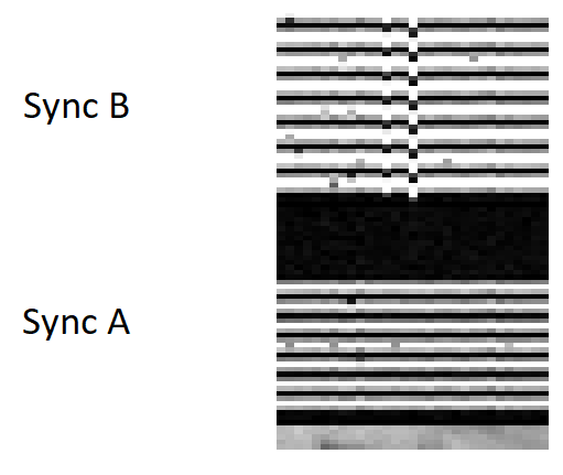 sample loss